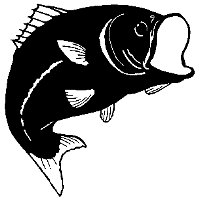 Black and white fish pattern.
