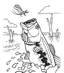 Bass Fishing Coloring Pages