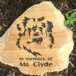Pet memorial on rocks.