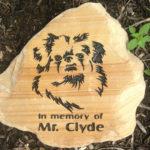 Pet memorial on rocks.